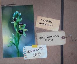 Les Orchidées de la Haute-Marne