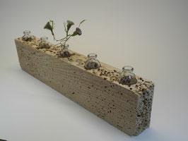 --NOUN--Vase aus Treibholz