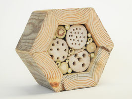 Kleines Wildbienen Hexagon