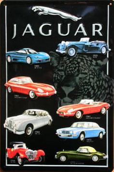 Jaguar Collage 1935 - 1991