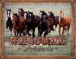 Welcome Friends Pferde