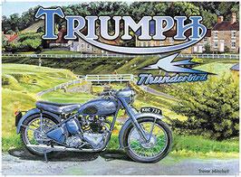 Triumph Thunderbird painted