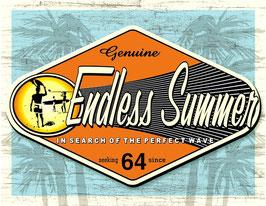 Endless Summer Logo quer
