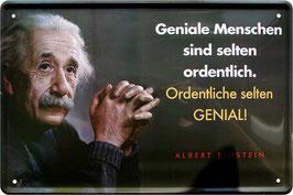 Einstein Geniale Menschen