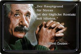 Einstein Idioten