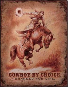 Cowboy by Choice Pferd