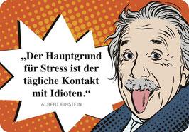 Einstein Idioten Hängeschild