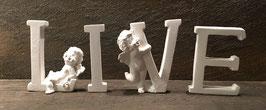 """""""Live"""" mit gemischten Buchstaben"""