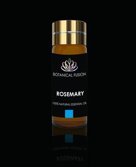 Rosmarin Extrakt