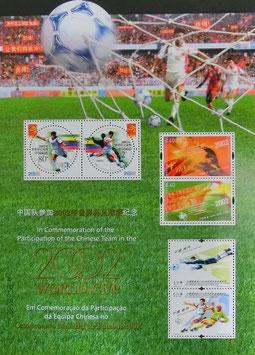 2002年ワールドカップサッカー組み合わせシート枠付き