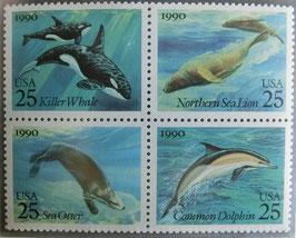 海の哺乳動物