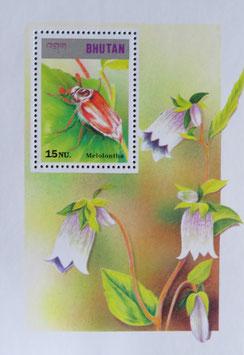 ゆりの花 ブータン王国