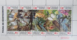 ジャングル エルサルバドル共和国