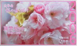 造幣局桜の通り抜け貨幣セット平成18年