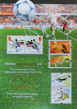 世界サッカー中国人参加記念