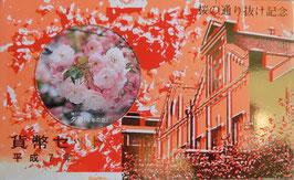 造幣局桜の通り抜け1995年