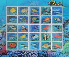 海の魚と珊瑚 ミクロネシア