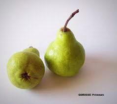 POIRE WILLIAMS