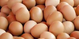 Eier von Legehennen aus der Freilandhaltung.