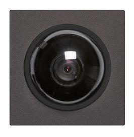 Kameramodule für das Sehen