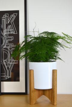 L ORBIC N05 Mid Century modern Design Planter Blumentopf Eiche