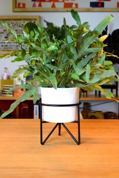 S Mid Century Hairpinleg Planter Plant Stand Blumentopf Weiß