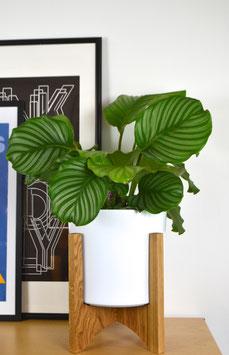 XL ORBIC N04 Mid Century modern Design Planter Blumentopf Eiche