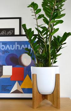 XL ORBIC N02 Mid Century modern Design Planter Blumentopf Eiche