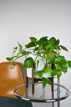 L Mid Century Style Planter Plant Stand Walnut