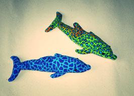 Delfin lang-schmal