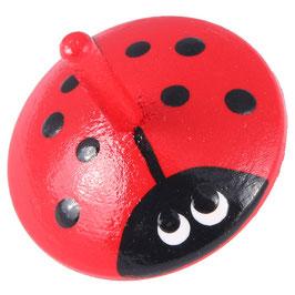 Käfer-Kreisel