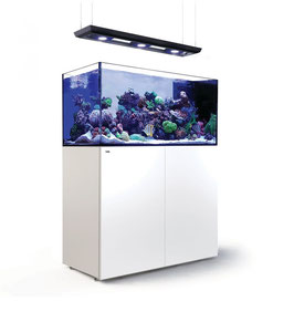 Red Sea REEFER Peninsula P500 Deluxe (125x60x60cm)