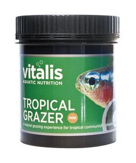 Vitalis TropicalGrazer Mini
