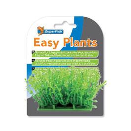 Superfish Easy Plants Carpet M