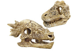 Superfish Skull T Rex