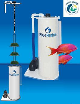 Blue marine Algae Reactor 1200