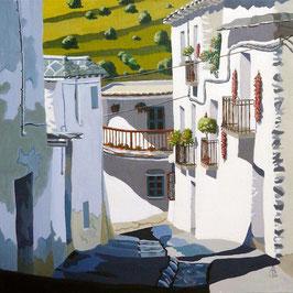 Village street, Las Alpujarras, Spain