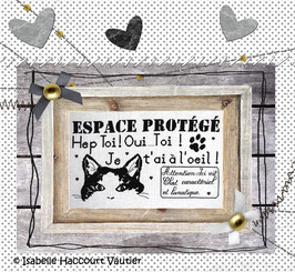 "BDN06 "" Espace Protégé"""