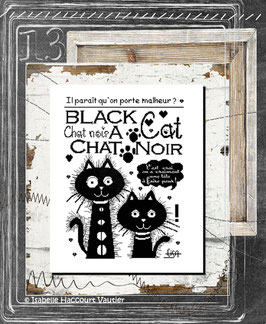 "BDN09 / "" Black Cat """