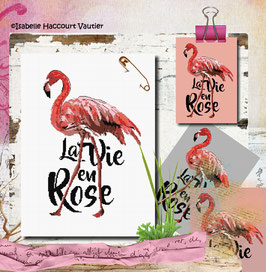 "Ref: BDN62 / "" Flamingo Rose """