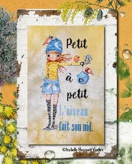 """TARLA05 / """" Petit à petit ..."""""""