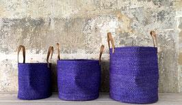 Harona Purple