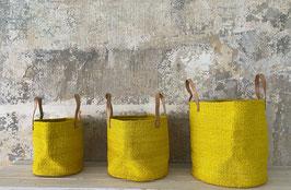 Harona yellow