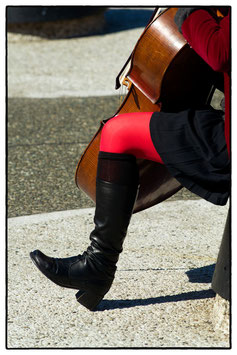Violoncello in NYC