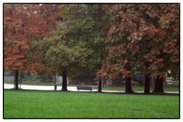 Parco Sempione - Milano