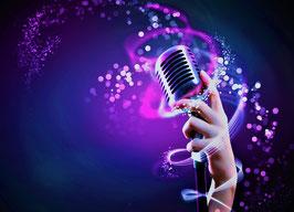Einzelstunde Gesangsunterricht Vocal Coaching 1 x 60 Min: 50.- €