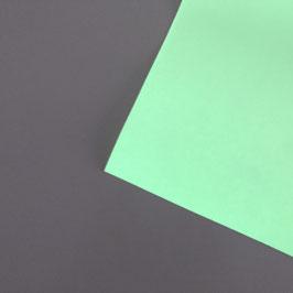 GLOW FOLIE  BOGEN 0,3x0,5m