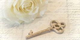 PV_Rose Schlüssel