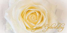 PG_Rose