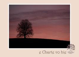 FK_e Charte vo hie 14